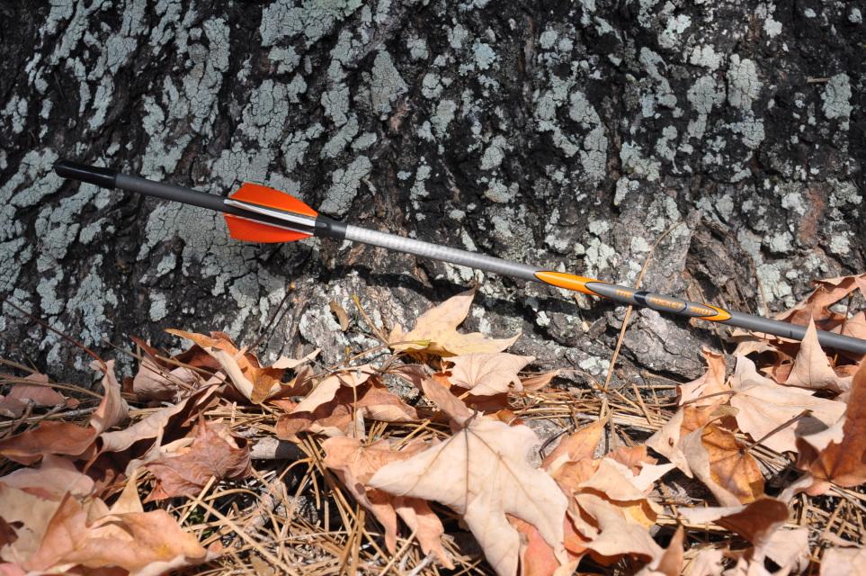 Карбонова Стрела The Pocket Shot Custom Arrows